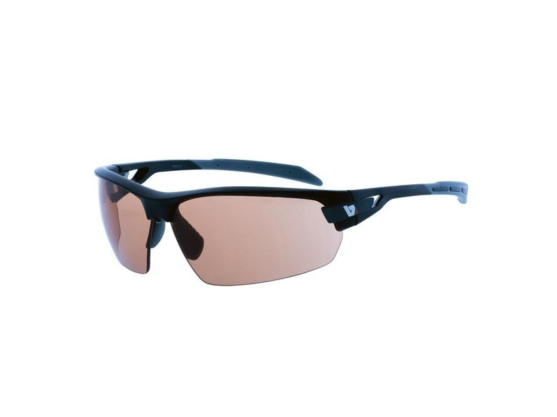 BZ Optics PHO Photochromic Glasses HD Lens click to zoom image